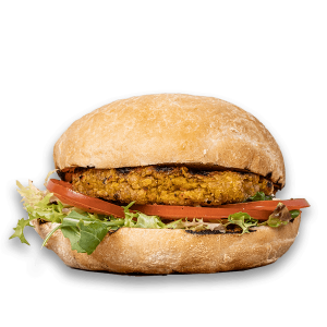 pollo-burguer-1