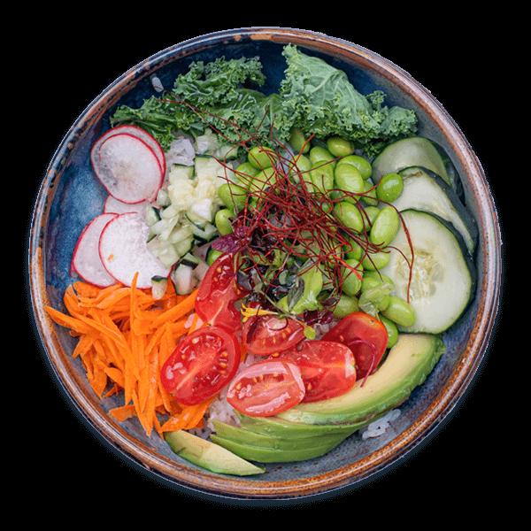 green poke bowl pazzafamily